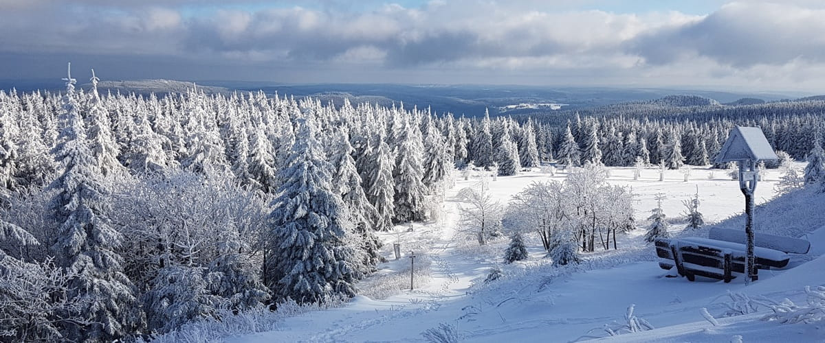 Winterlandschaft Oberhof - Pension Oberhof 810M
